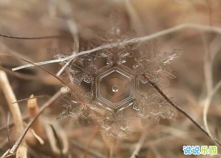 下雪天经典说说祝福语 适合下雪时发的祝福语